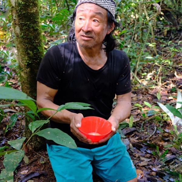 Making Sananga in the Amazon